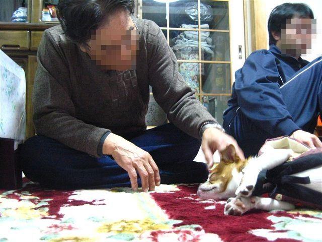 f:id:yasukazu01:20120104194108j:image