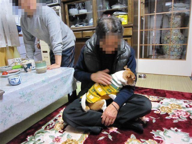 f:id:yasukazu01:20120105081432j:image