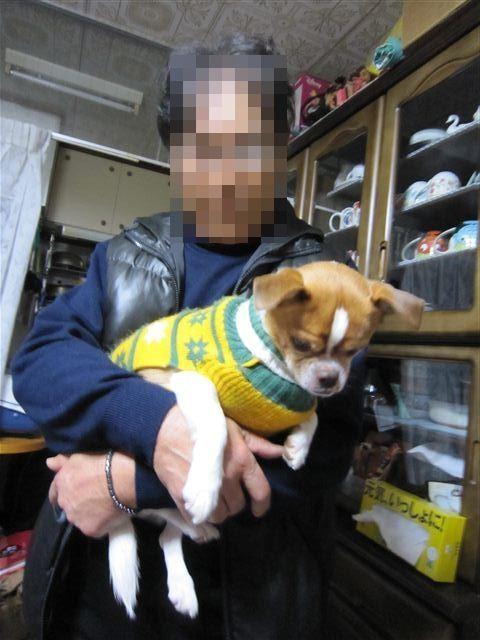 f:id:yasukazu01:20120105094911j:image