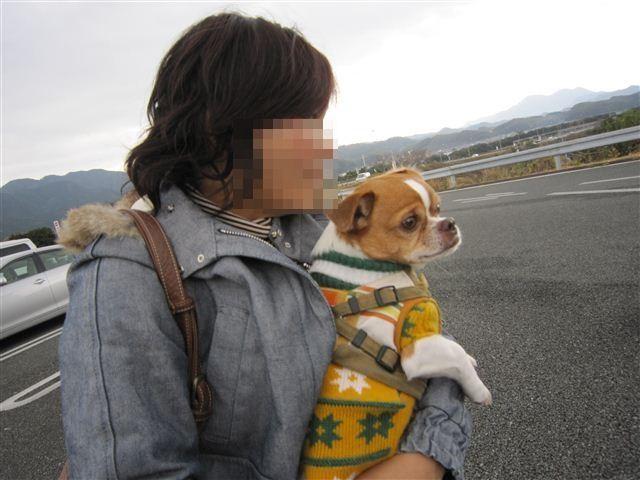 f:id:yasukazu01:20120105121542j:image