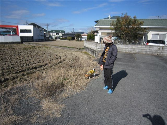 f:id:yasukazu01:20120108132328j:image