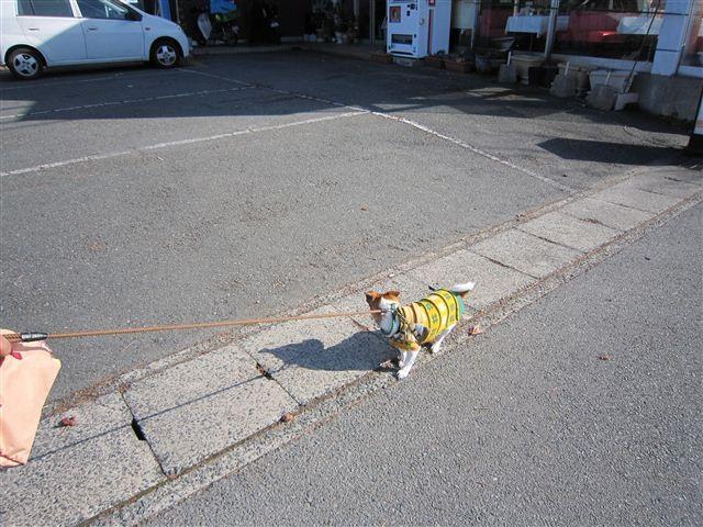 f:id:yasukazu01:20120108133039j:image