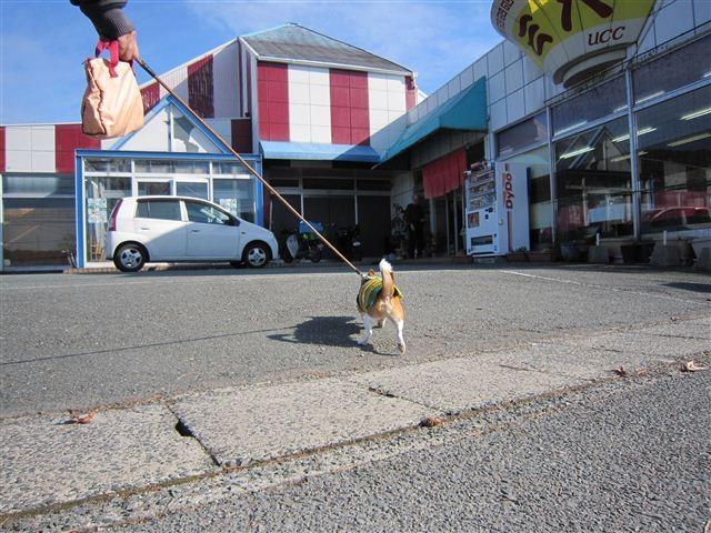 f:id:yasukazu01:20120108133044j:image
