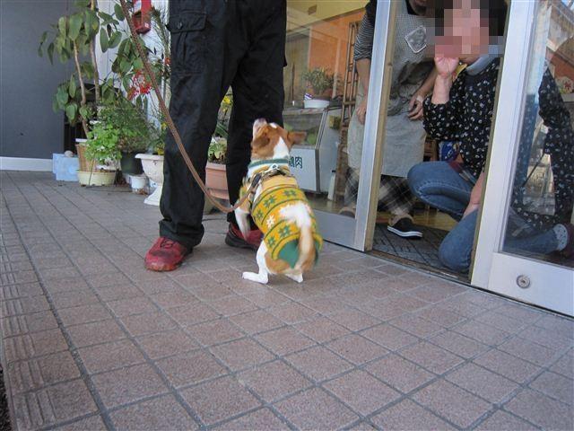 f:id:yasukazu01:20120108133109j:image