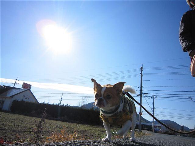 f:id:yasukazu01:20120108133519j:image