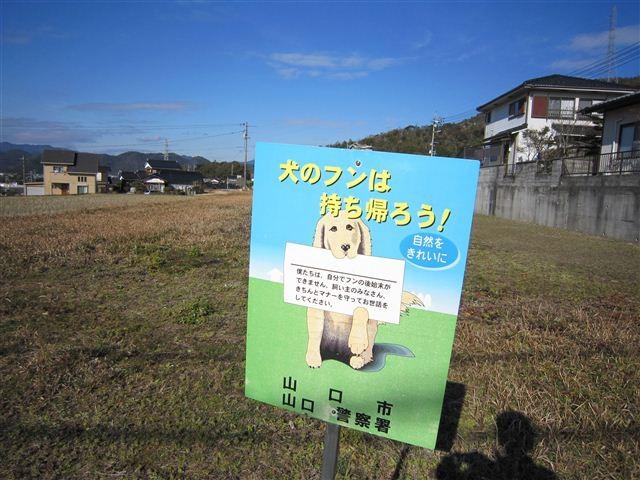 f:id:yasukazu01:20120108133957j:image
