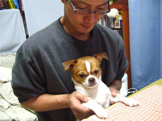 f:id:yasukazu01:20120112192425j:image