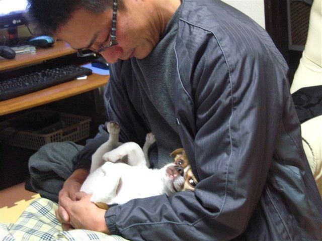 f:id:yasukazu01:20120112231229j:image