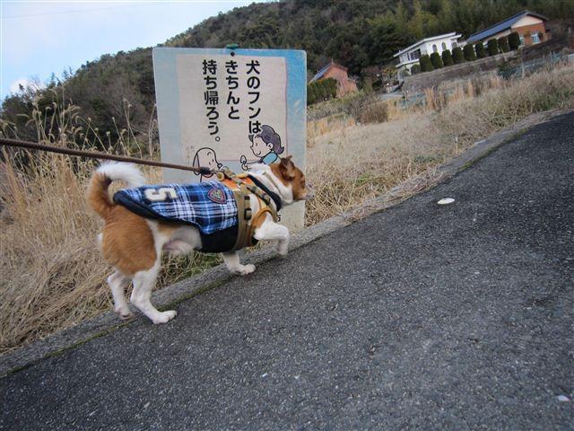 f:id:yasukazu01:20120125133520j:image