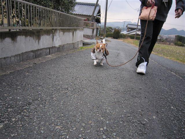 f:id:yasukazu01:20120127144052j:image