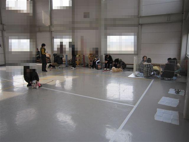 f:id:yasukazu01:20120128110938j:image