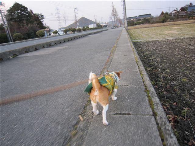 f:id:yasukazu01:20120201172015j:image