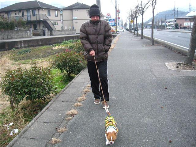 f:id:yasukazu01:20120204142307j:image