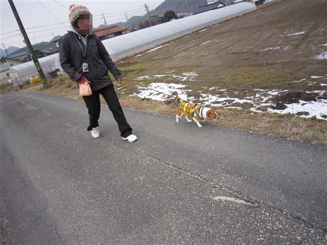 f:id:yasukazu01:20120204142823j:image
