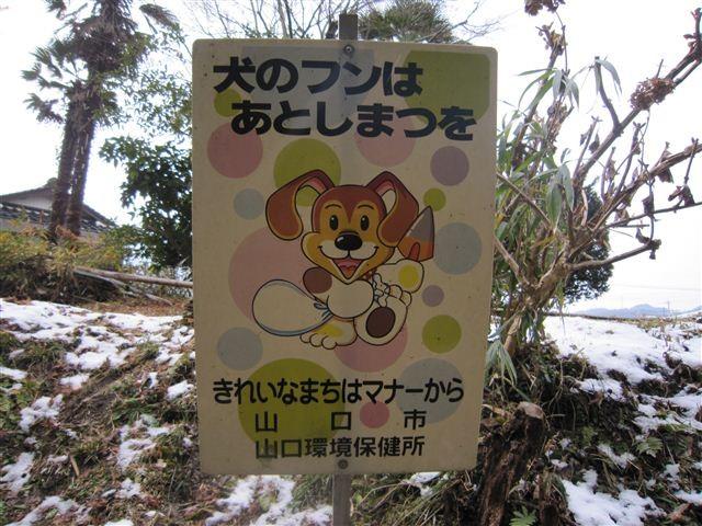f:id:yasukazu01:20120204143926j:image