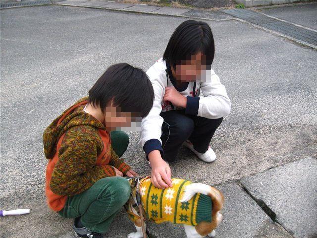 f:id:yasukazu01:20120205143519j:image