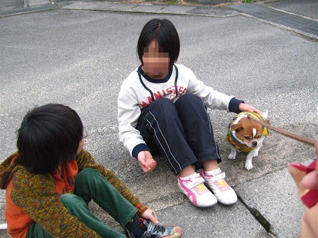 f:id:yasukazu01:20120205143541j:image