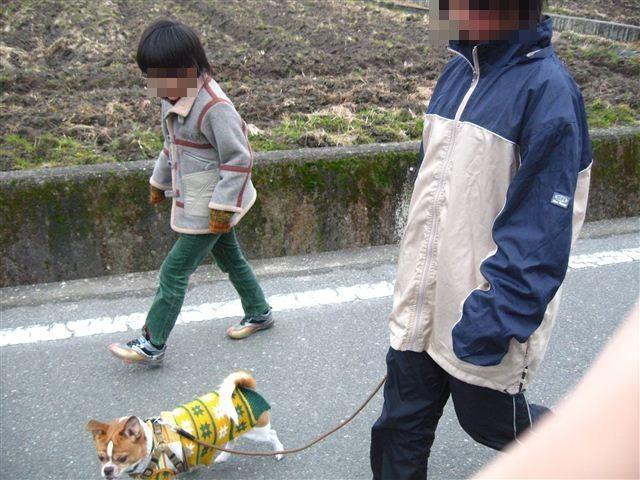 f:id:yasukazu01:20120205145723j:image
