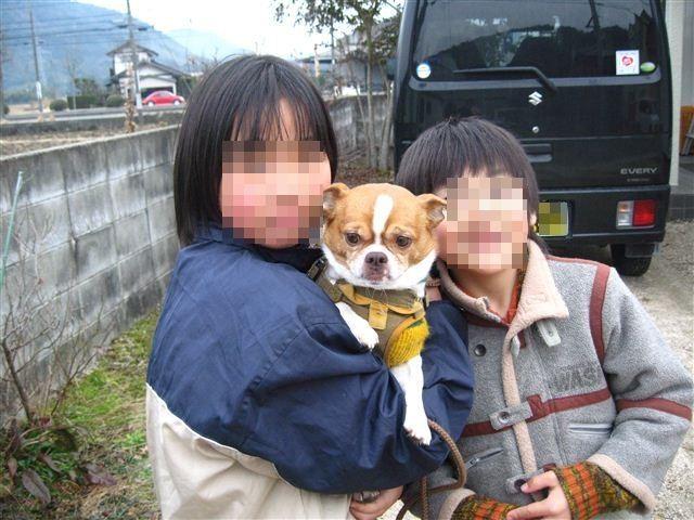 f:id:yasukazu01:20120205150429j:image