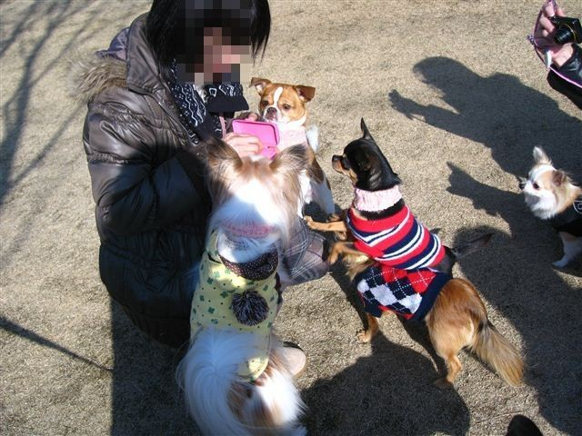 f:id:yasukazu01:20120212144447j:image