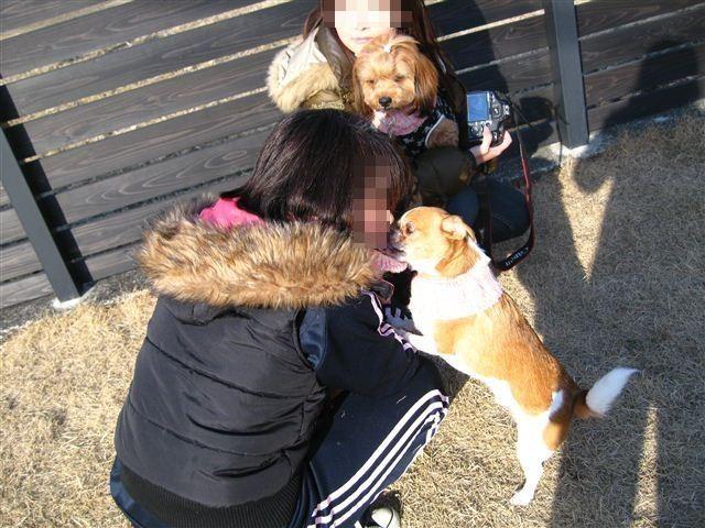 f:id:yasukazu01:20120212155621j:image