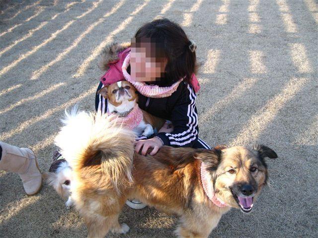 f:id:yasukazu01:20120212161351j:image