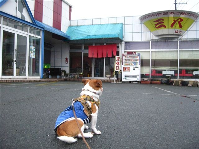 f:id:yasukazu01:20120213163601j:image