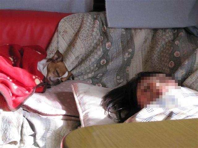 f:id:yasukazu01:20120217151018j:image