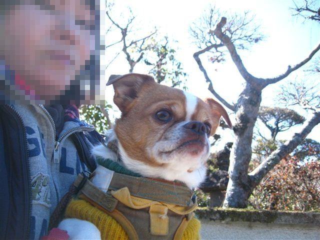 f:id:yasukazu01:20120220122754j:image