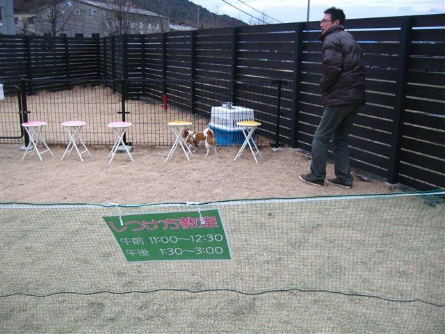 f:id:yasukazu01:20120226131609j:image