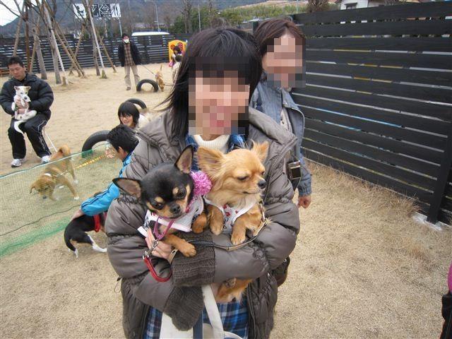 f:id:yasukazu01:20120226134052j:image