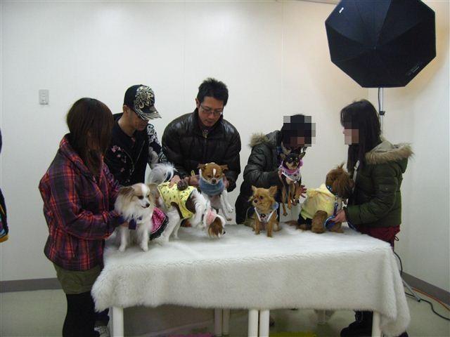 f:id:yasukazu01:20120226142653j:image