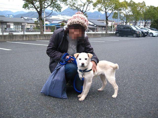 f:id:yasukazu01:20120228095748j:image