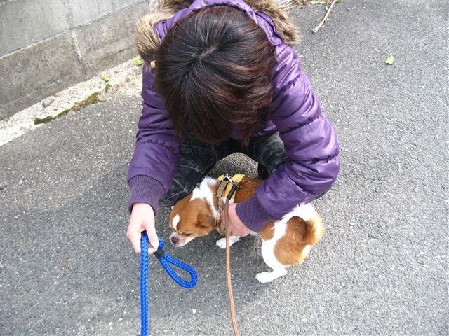 f:id:yasukazu01:20120228114455j:image