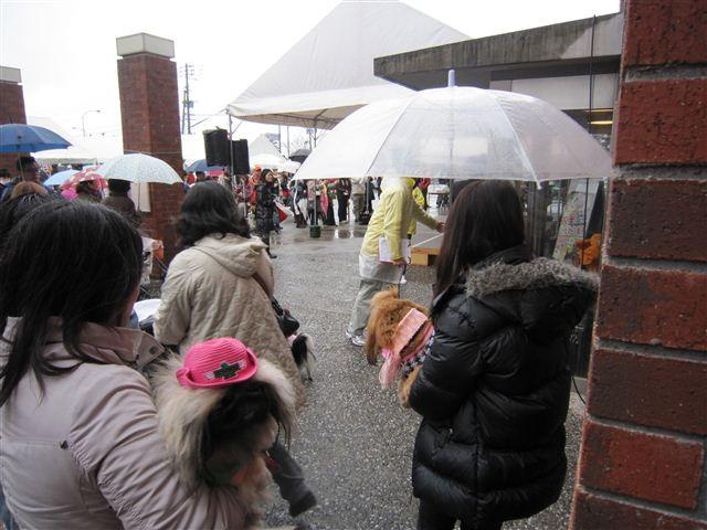 f:id:yasukazu01:20120304121420j:image