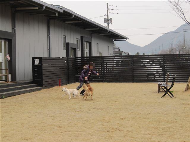 f:id:yasukazu01:20120307160047j:image