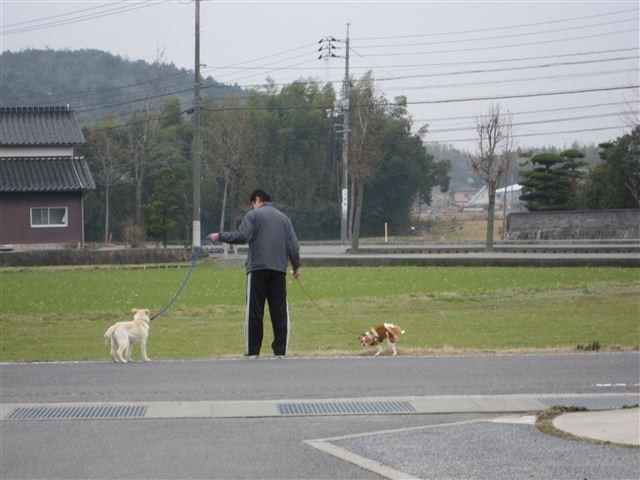 f:id:yasukazu01:20120308142558j:image