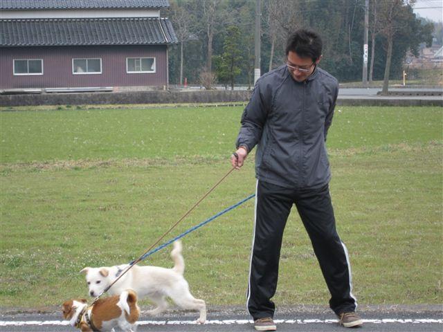 f:id:yasukazu01:20120308142611j:image