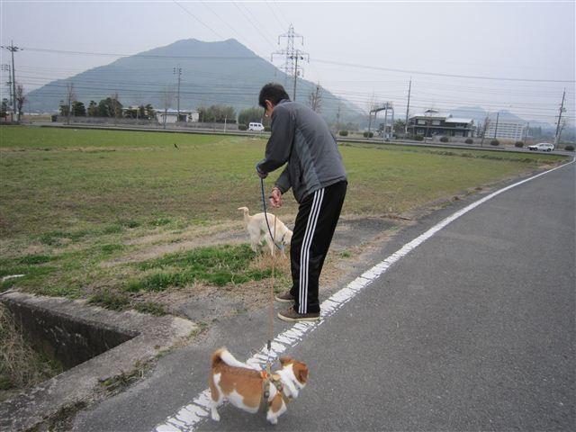 f:id:yasukazu01:20120308142648j:image