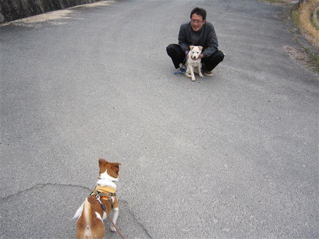 f:id:yasukazu01:20120308143404j:image