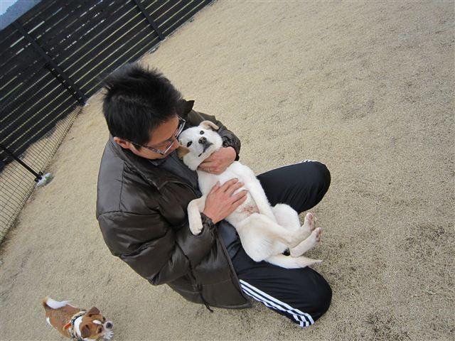 f:id:yasukazu01:20120309125210j:image