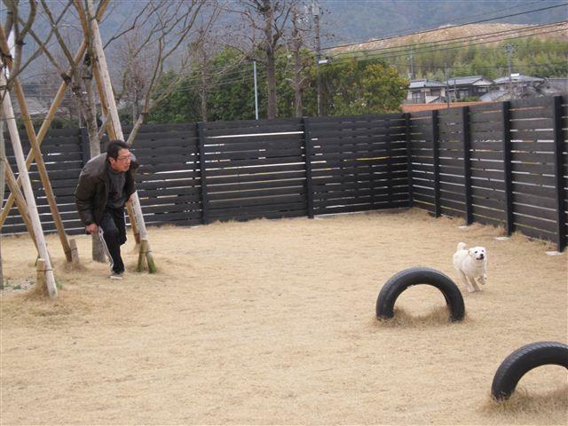 f:id:yasukazu01:20120309125333j:image