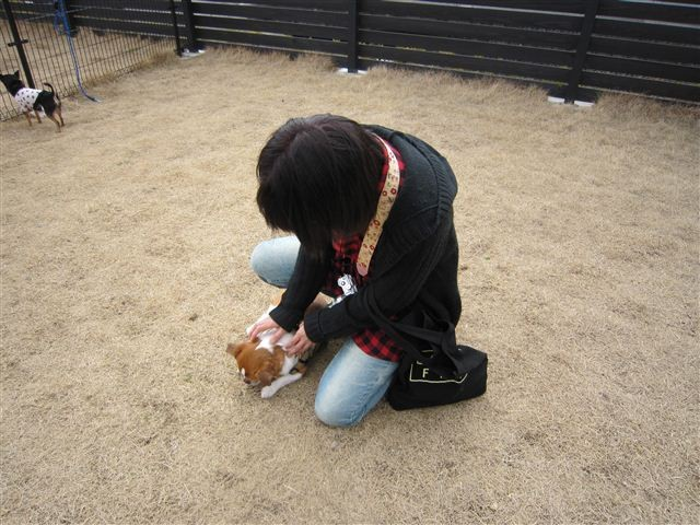 f:id:yasukazu01:20120317143349j:image