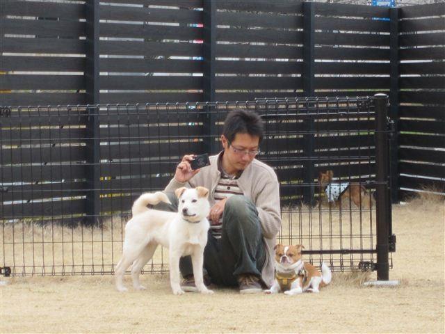 f:id:yasukazu01:20120317151534j:image