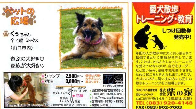 f:id:yasukazu01:20120319172602j:image