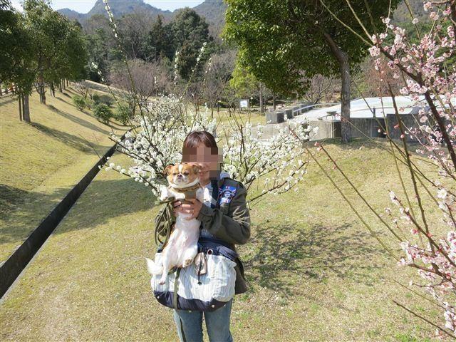 f:id:yasukazu01:20120321121112j:image