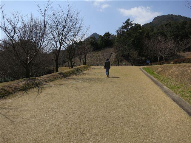 f:id:yasukazu01:20120321121602j:image