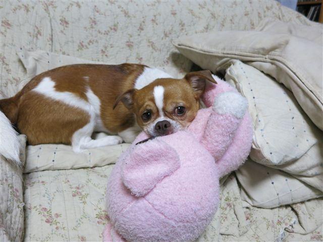 f:id:yasukazu01:20120324194324j:image