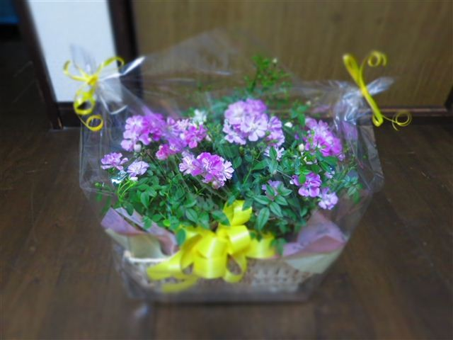 f:id:yasukazu01:20120327195352j:image