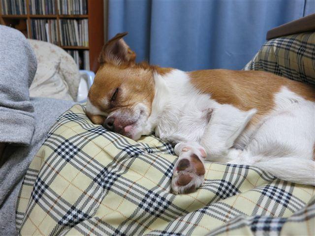 f:id:yasukazu01:20120327214308j:image